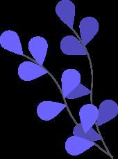 video leaf